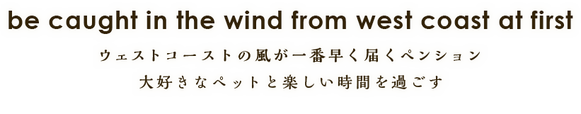 be caught in the wind from west coast at first ウェストコーストの風が一番早く届くペンション 大好きなペットと楽しい時間を過ごす